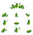 set green leaves on a white background eco vector image vector image