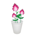 Three Beautiful Pink Flowers in A Flowerpot vector image