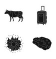 travel agriculture and or web icon in black style vector image vector image