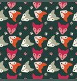 bright faces foxs vector image