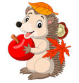 cartoon bahedgehog with red apple vector image vector image