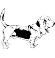 dog drawn with ink on white background vector image vector image