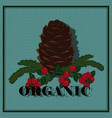 for organic products vector image