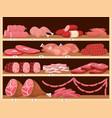 meat on shelves fresh sausages pork ham vector image