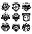 volleyball emblems on white background design