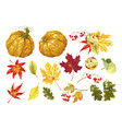 autumn festival set with decor elements of nature vector image