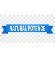 blue stripe with natural potence caption vector image