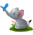 cartoon baby elephant playing with blue bird vector image