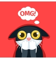 frightened cat thinks oh my god vector image vector image