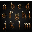 golden alphabet vector image
