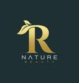 letter r luxury letter logo design icon vector image vector image