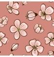 cherry blossom or sakura seamless background vector image