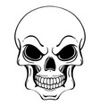 black and white of human skull in ink vector image vector image