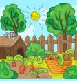 cartoon garden with carrots vector image vector image