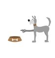 dog and food bowl vector image vector image