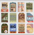 sale tag price vector image vector image