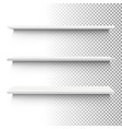 white shelf set vector image vector image