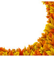 autumn leaves isolated on white background vector image vector image