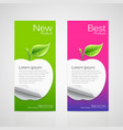 Brochure design apple vector image vector image