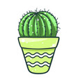 home cactus pot succulent green flower decor vector image