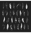 set different hand drawn feathers on vector image vector image