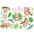 set isolated funny sloth and tropical plants vector image vector image