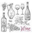sketch wine elements - bottles glasses vector image vector image
