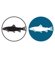 trout fish vector image vector image
