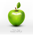 green apple with green leaf isolated vector image