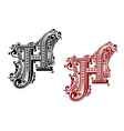 Caital letter H in floral style vector image vector image