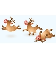 Christmas Reindeer Collection vector image