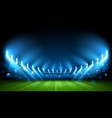 football arena stadium vector image