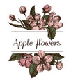 hand drawn design with apple flowers highly vector image