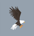 north american bald eagle symbol of freedom and vector image vector image