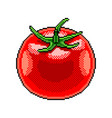pixel tomato fruit detailed isolated vector image vector image