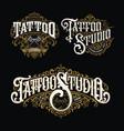 vintage tattoo lettering logo set vector image