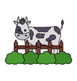 cow fence farm vector image