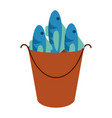 fishes in bucket vector image
