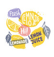 lemon with leaf and text vector image