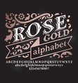retro rose gold font vector image vector image