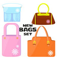 woman bags collection vector image