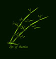 bamboo hand drawn vector image