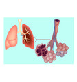 diagram the pulmonary alveolus vector image