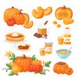 pumpkin food soup cake pie meals organic vector image vector image