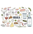 set of hand drawn russian vodka and different vector image vector image