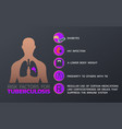 tuberculosis icon design infographic health vector image