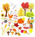 autumn elements vector image