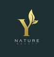 letter y luxury letter logo design icon vector image