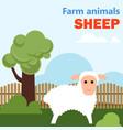farm animal sheep vector image vector image