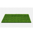square green grass field transparent background vector image vector image